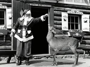 Обои Санта