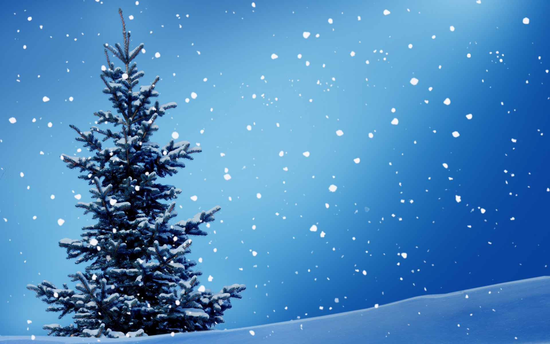 Зимняя елка обои на рабочий стол