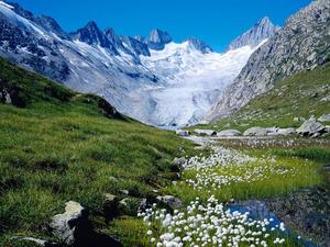 Обои Швейцарская весна