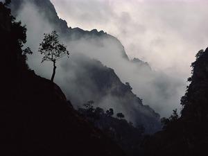 Обои Туман спускается с гор