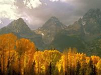 Обои для рабочего стола: Осень в горах