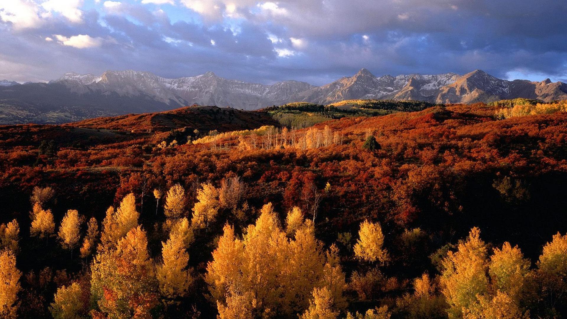 она осенние пейзажи казахстана фото сегодняшний