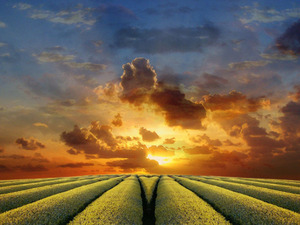 Обои Краски неба