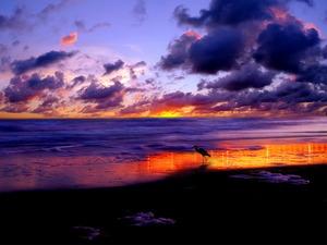Обои Огонь закатного неба