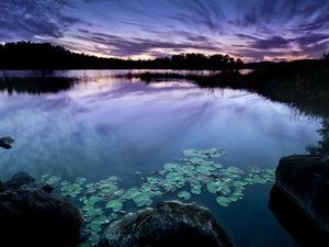 Обои Фиолетовый закат