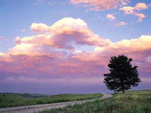 Обои Розовые рассветные облака