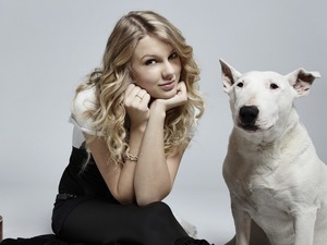 Обои Тейлор Свифт (Taylor Swift)